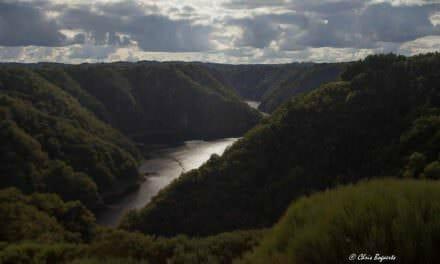 Des racines et des Ailes dans la Haute Vallée de la Dordogne